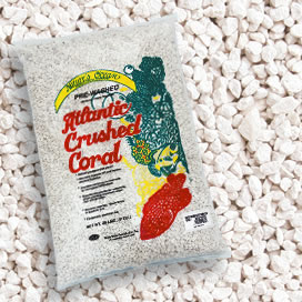 Natures Ocean® Premium Atlantic Crushed Coral Sand with Aragonite #4